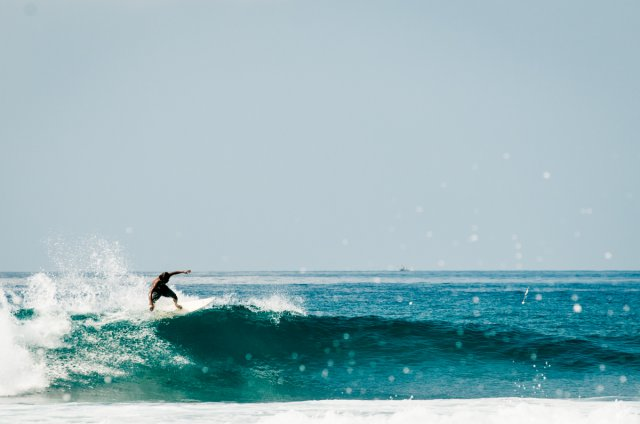 Bild 12 von 27 // Sri Lanka - Surfvilla&Wildlife
