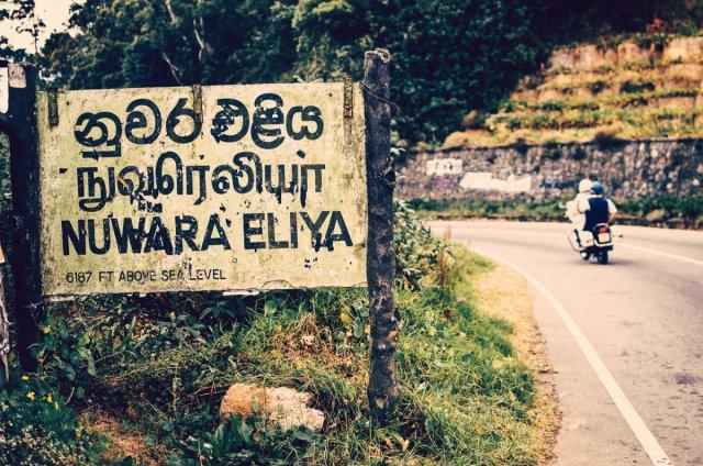 Bild 4 von 27 // Sri Lanka - Surfvilla&Wildlife