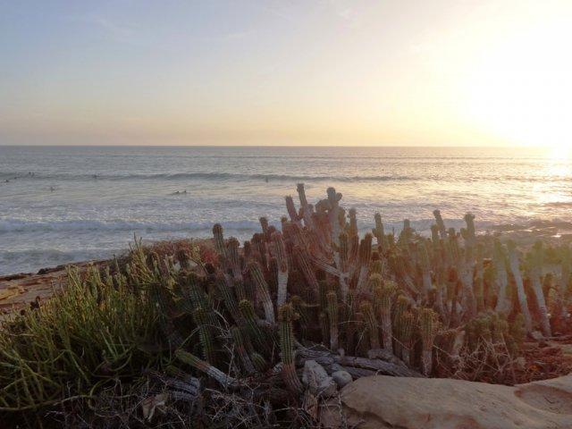 Bild 25 von 34 // Marokko - Cli Surfcamp