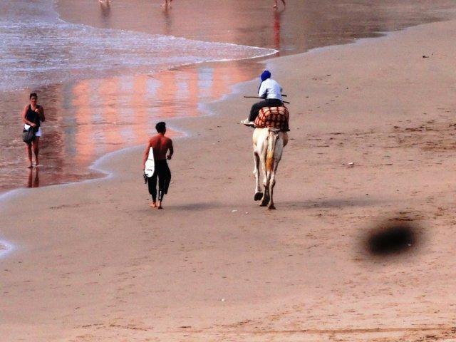 Bild 3 von 34 // Marokko - Cli Surfcamp