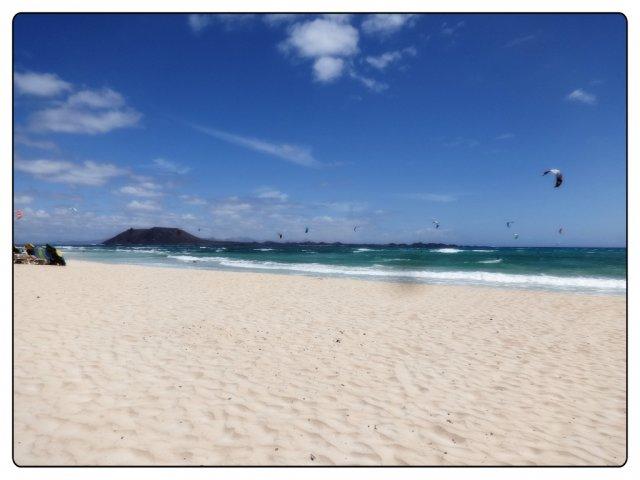 Bild 6 von 27 // Fuerteventura - O'Neill Surfschule